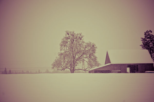 Winter2008-08