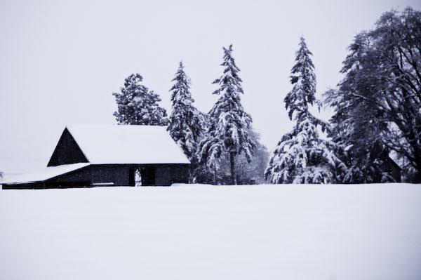 Winter2008-06